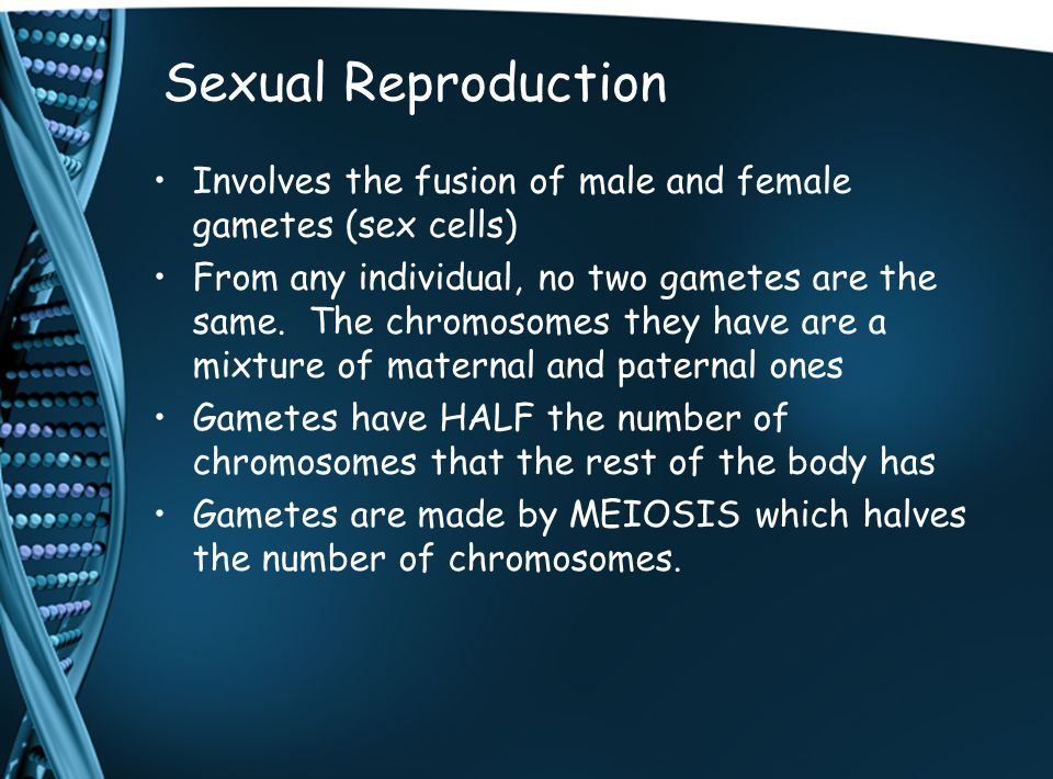 Sexual Reproduction Involves the fusion of male and female gametes (sex cells) From any individual, no two gametes are the same.