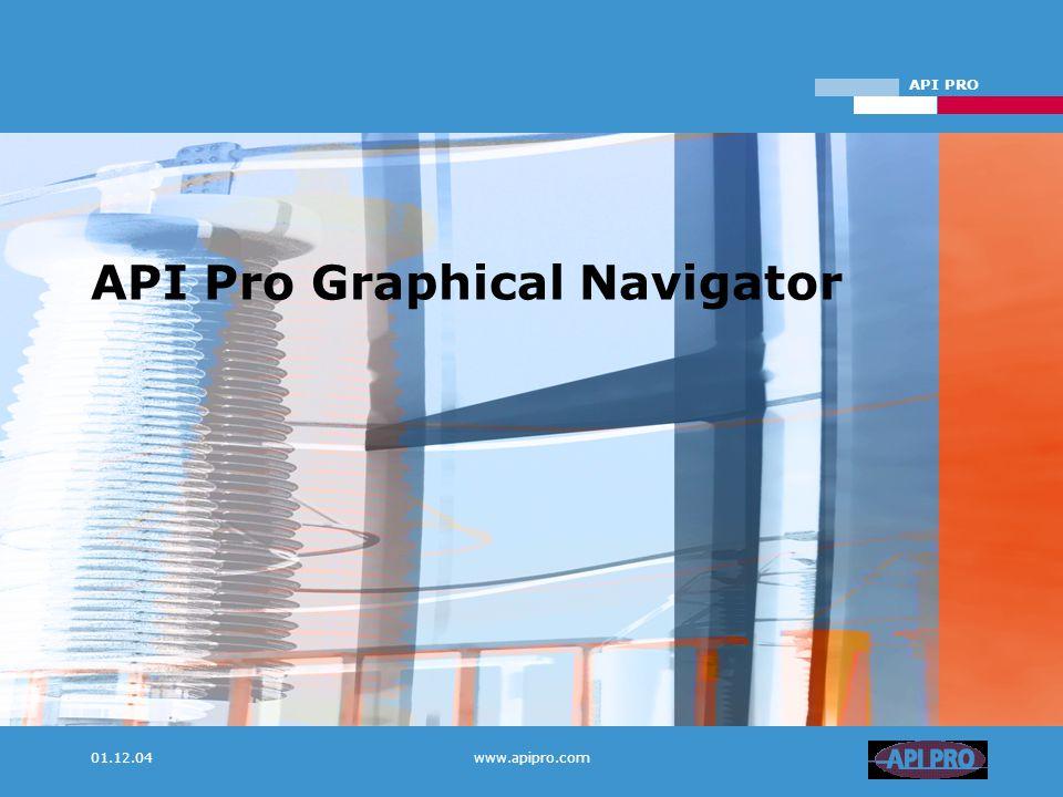 API PRO 01.12.04www.apipro.com API Pro Graphical Navigator