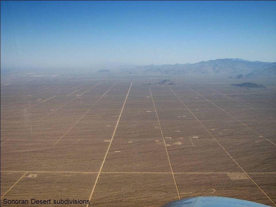 Sonoran Desert subdivisions