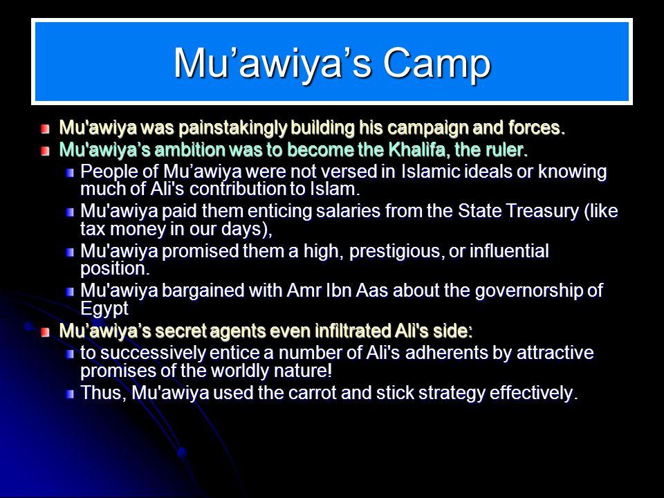 Muawiyas Camp Mu'awiya was painstakingly building his campaign and forces. Mu'awiya was painstakingly building his campaign and forces. Mu'awiyas ambi