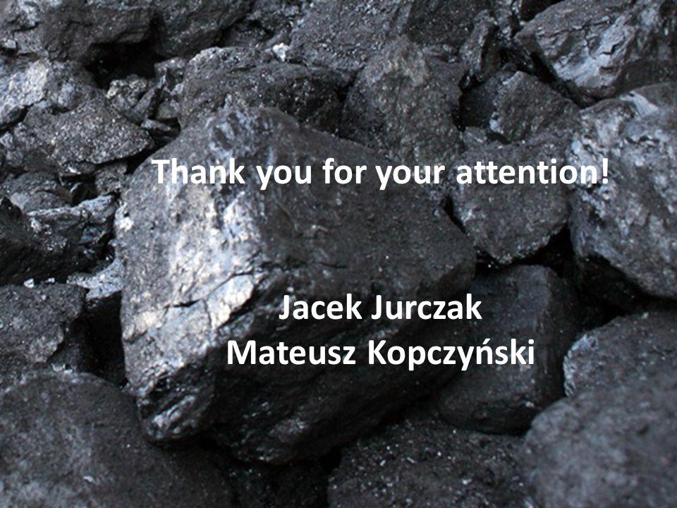 Thank you for your attention! Jacek Jurczak Mateusz Kopczyński