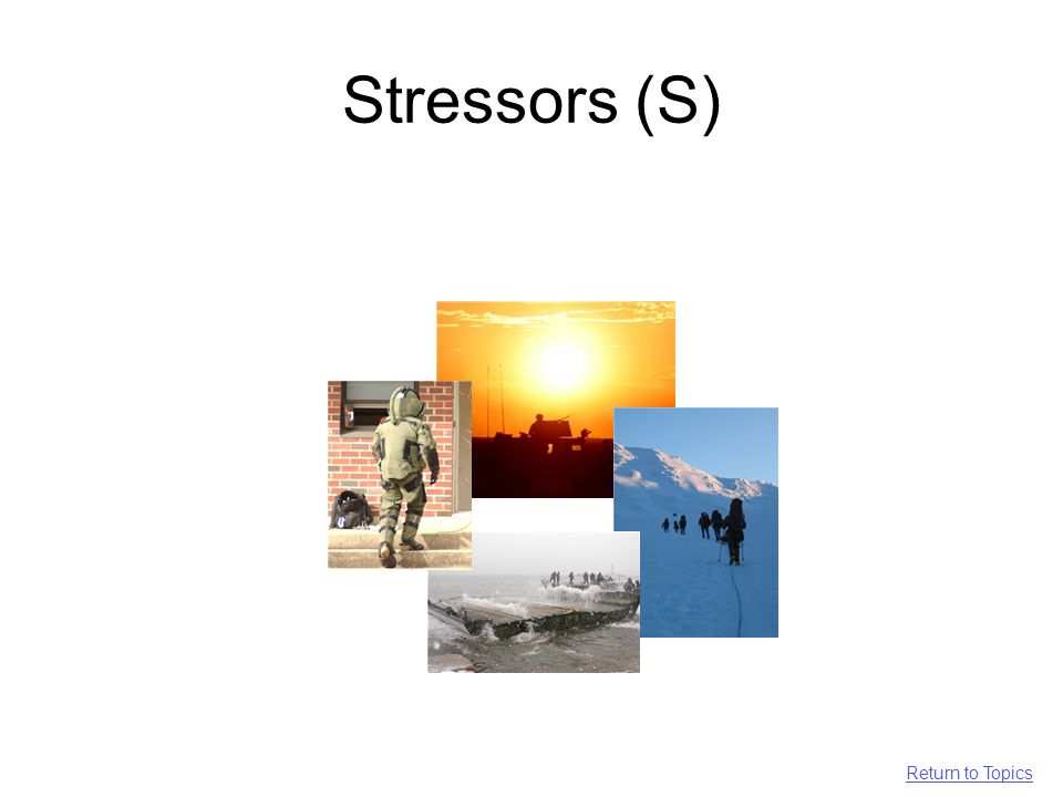 Stressors (S) Return to Topics