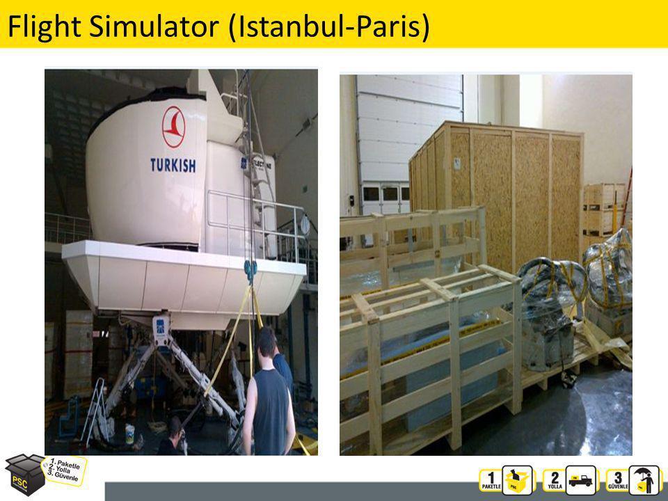 Flight Simulator (Istanbul-Paris) 19