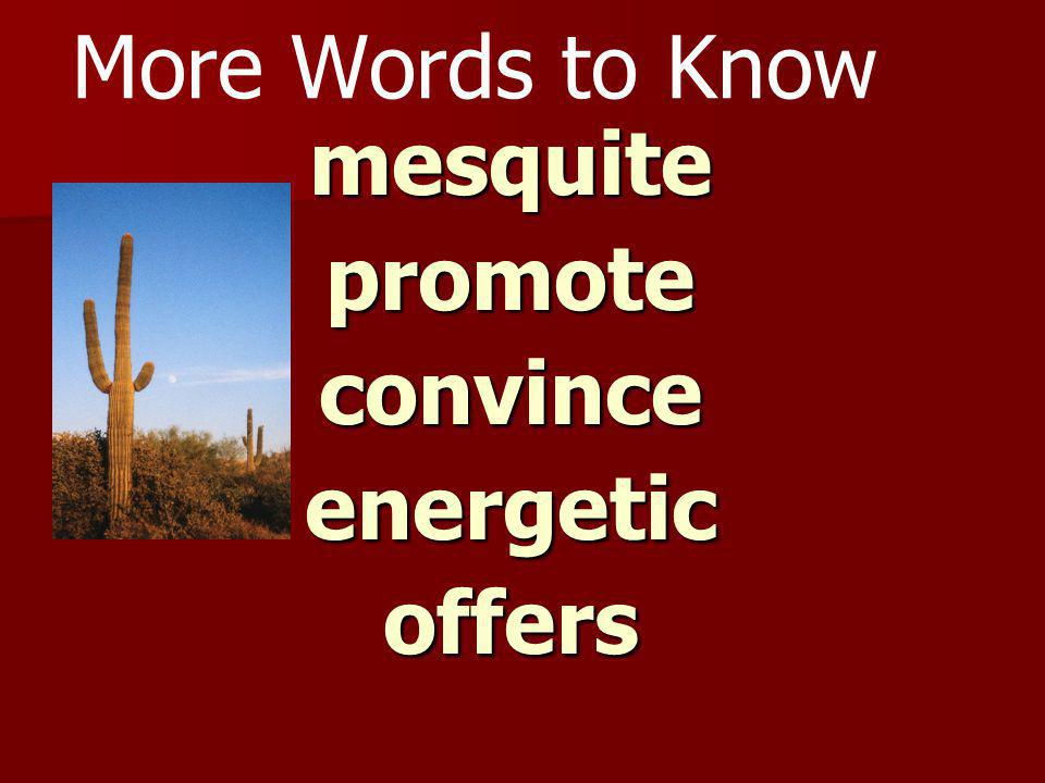 Vocabulary - Say It spurs spurs coyote coyote dudes dudes roundup roundup bawling bawling