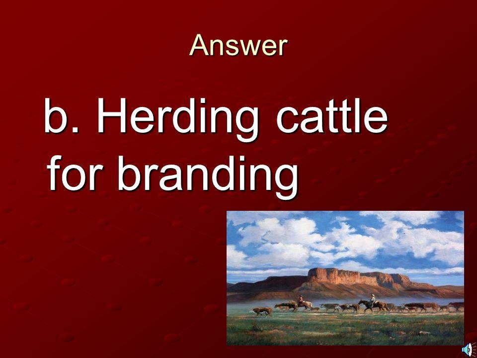 Answer b. Herding cattle for branding b. Herding cattle for branding