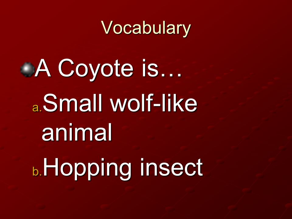 Vocabulary A Coyote is… Small wolf-like animal Small wolf-like animal Hopping insect Hopping insect