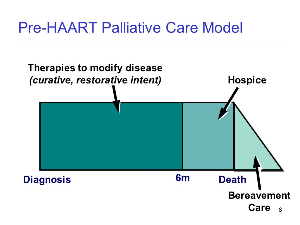 8 Pre-HAART Palliative Care Model DiagnosisDeath Therapies to modify disease (curative, restorative intent) Hospice Bereavement Care 6m