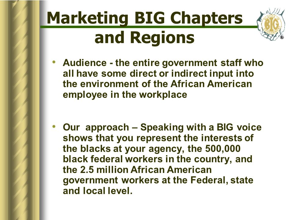 Marketing BIG Chapters and Regions Audience - the entire government staff who all have some direct or indirect input into the environment of the African American employee in the workplace Our approach – Speaking with a BIG voice shows that you represent the interests of the blacks at your agency, the 500,000 black federal workers in the country, and the 2.5 million African American government workers at the Federal, state and local level.