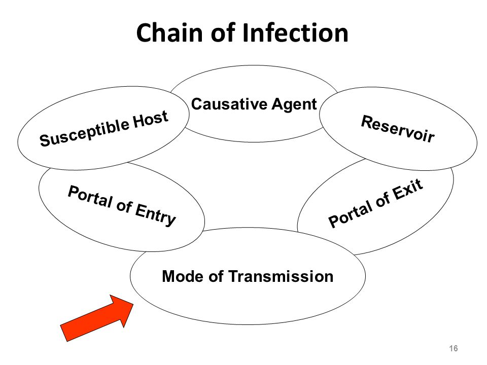 Causative Agent Portal of Exit Mode of Transmission Portal of Entry Susceptible Host Reservoir Chain of Infection 16