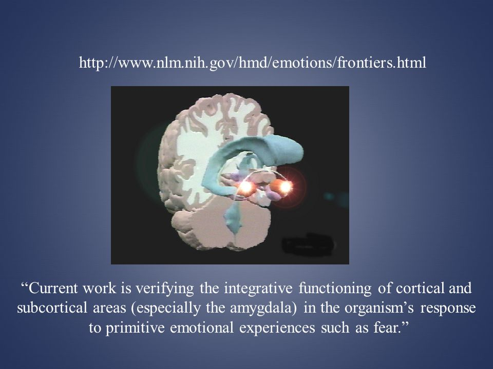 http://www.nlm.nih.gov/hmd/emotions/frontiers.html Current work is verifying the integrative functioning of cortical and subcortical areas (especially