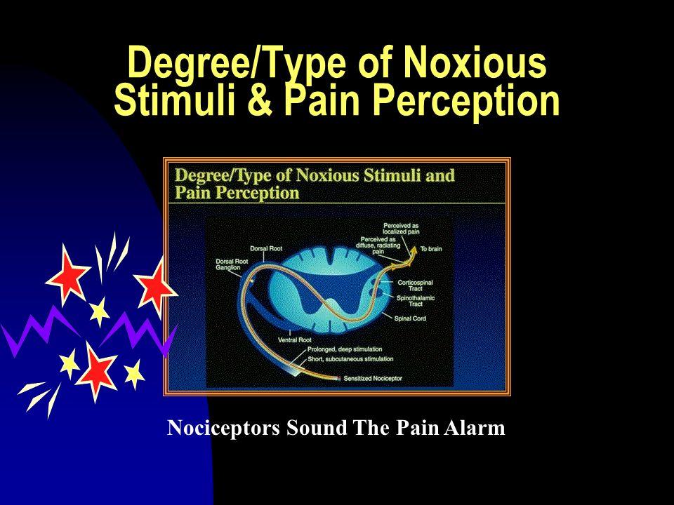 Ascending Pain Pathways