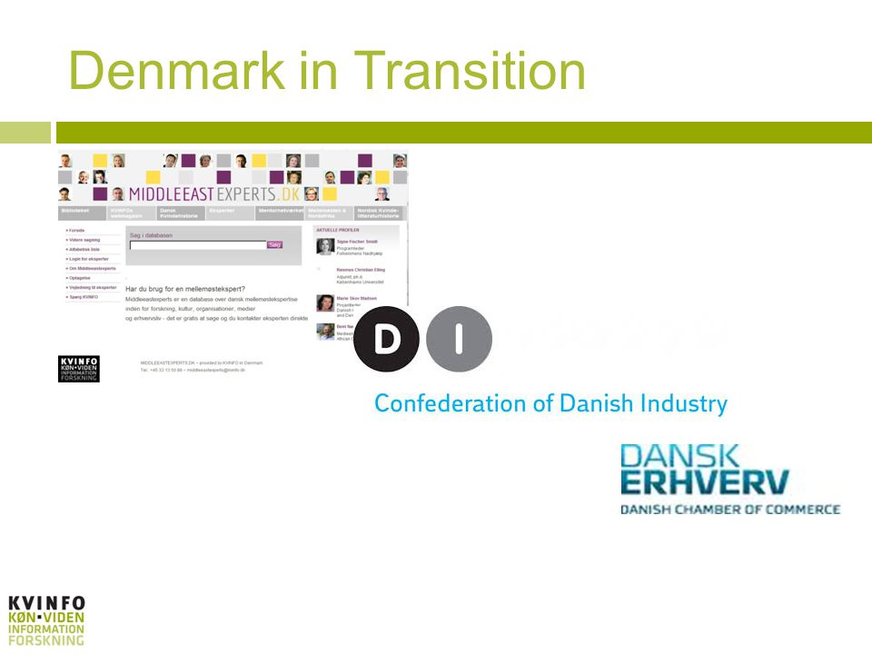 Denmark in Transition