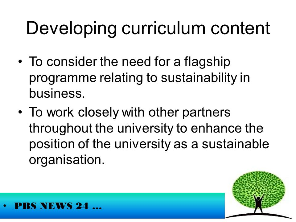 Developing curriculum content To consider the need for a flagship programme relating to sustainability in business.