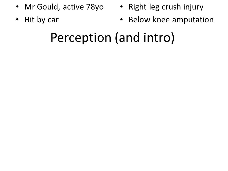 Perception (and intro) Mr Gould, active 78yo Hit by car Right leg crush injury Below knee amputation