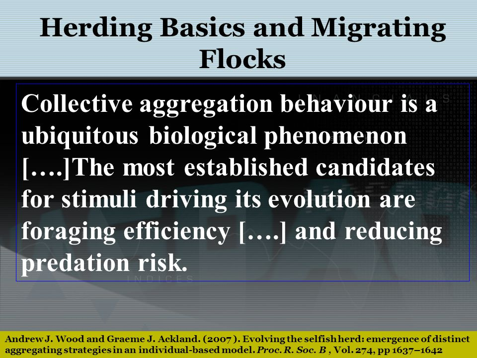 Andrew J. Wood and Graeme J. Ackland. (2007 ). Evolving the selfish herd: emergence of distinct aggregating strategies in an individual-based model. P