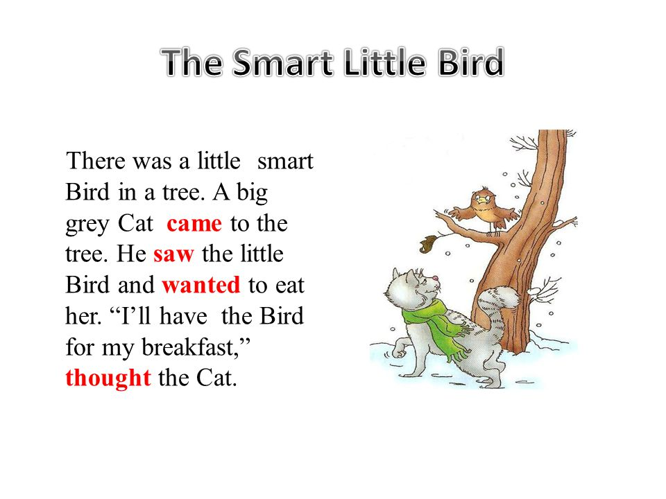 There was a little smart Bird in a tree. A big grey Cat came to the tree.