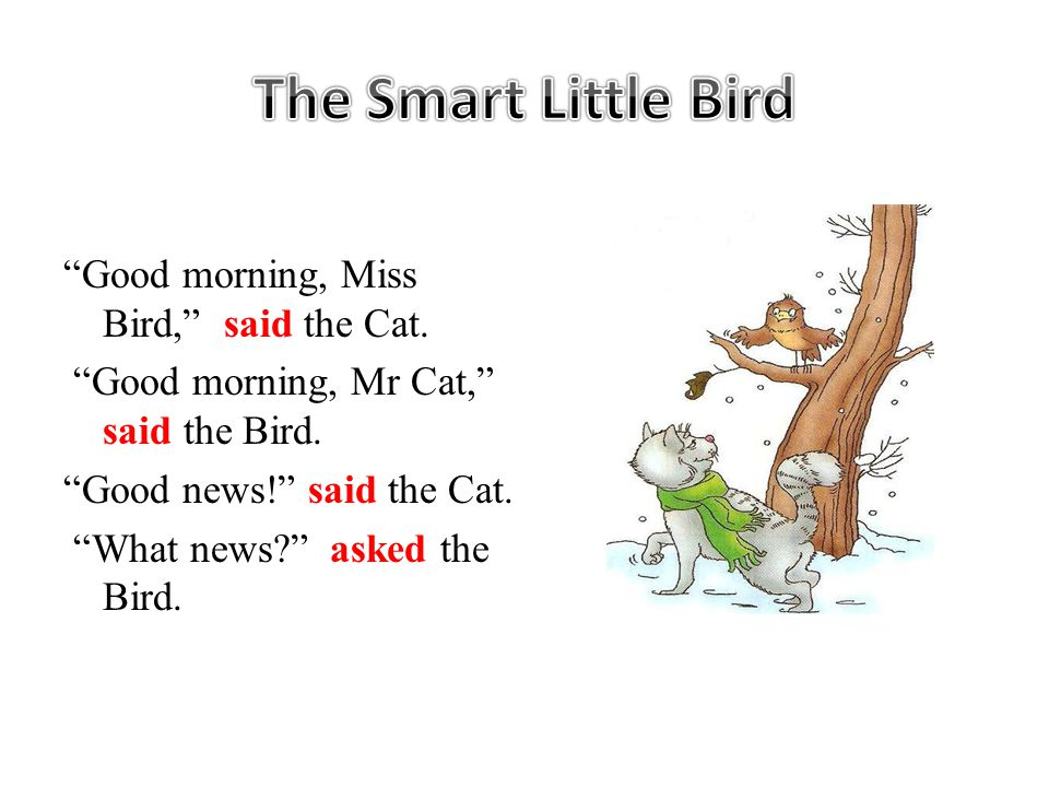 Good morning, Miss Bird, said the Cat. Good morning, Mr Cat, said the Bird.