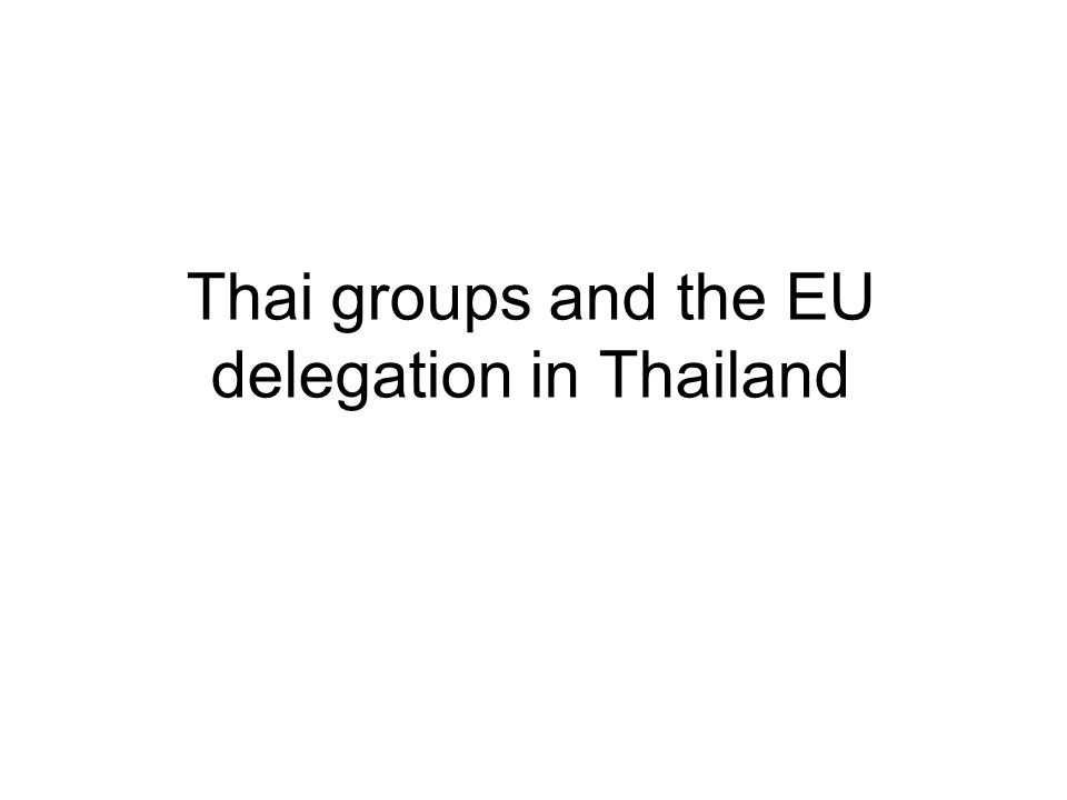 Thai groups and the EU delegation in Thailand
