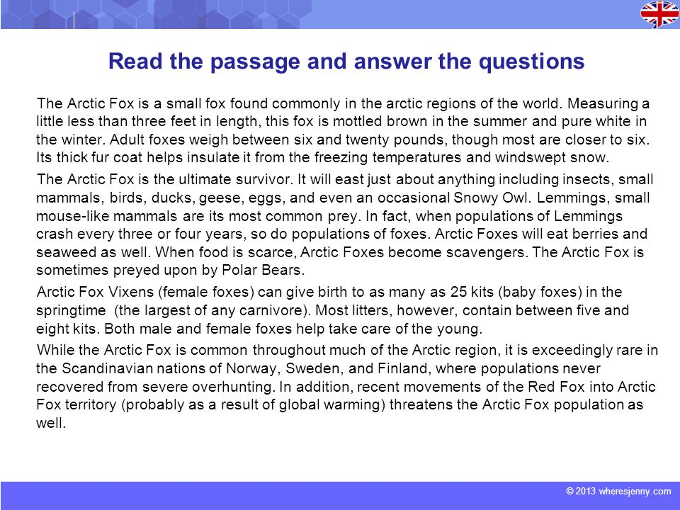 © 2013 wheresjenny.com Read the passage and answer the questions The Arctic Fox is a small fox found commonly in the arctic regions of the world.
