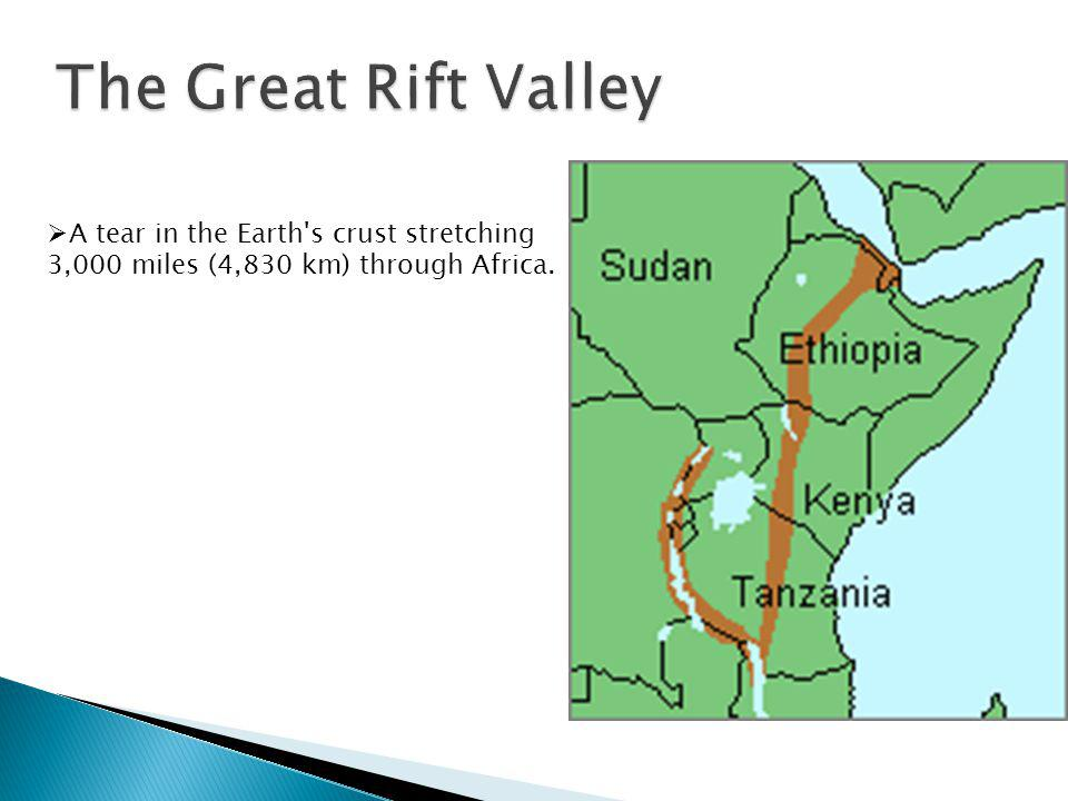 A tear in the Earth's crust stretching 3,000 miles (4,830 km) through Africa.