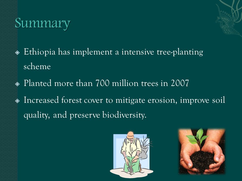 Ethiopia has implement a intensive tree-planting scheme Planted more than 700 million trees in 2007 Increased forest cover to mitigate erosion, improv
