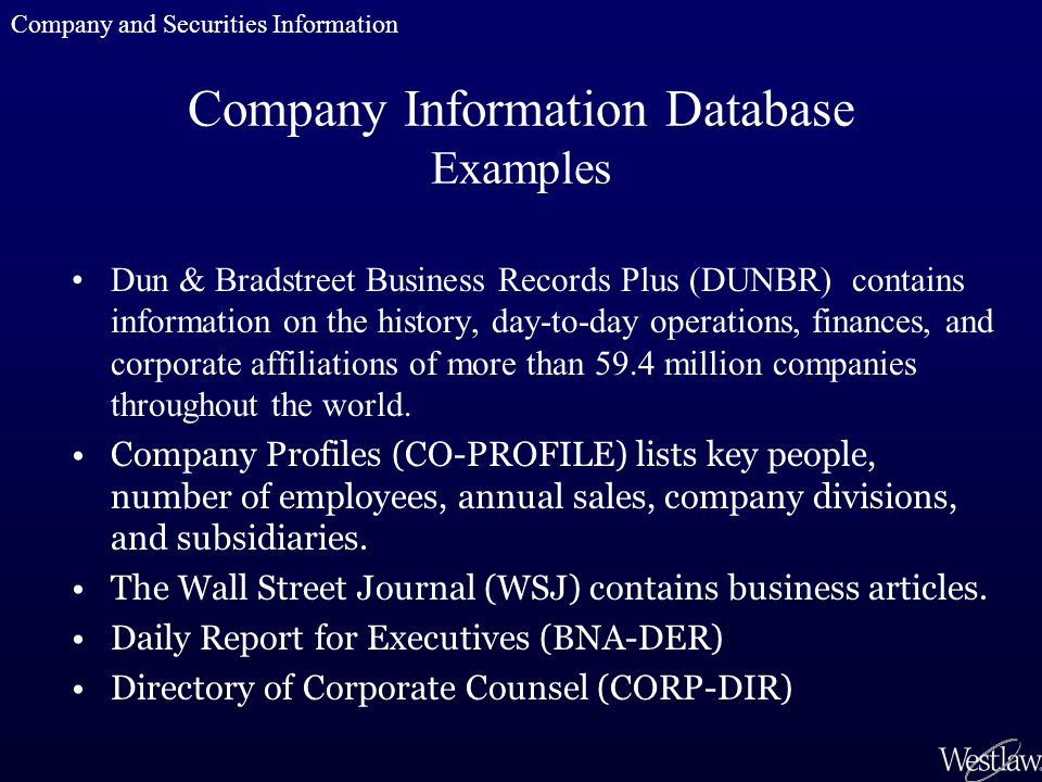 Company Information Database Examples Dun & Bradstreet Business Records Plus (DUNBR) contains information on the history, day-to-day operations, finan