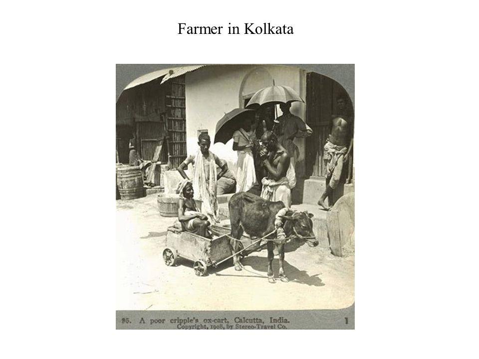 Farmer in Kolkata