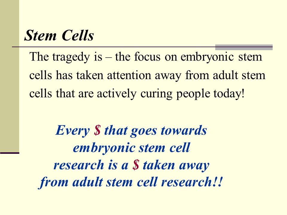 Stem Cells The tragedy is – the focus on embryonic stem cells has taken attention away from adult stem cells that are actively curing people today! Ev