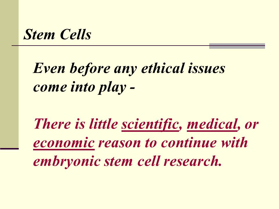 Stem Cells Even before any ethical issues come into play - There is little scientific, medical, or economic reason to continue with embryonic stem cell research.
