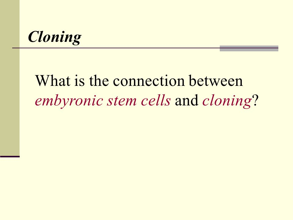 What is the connection between embyronic stem cells and cloning