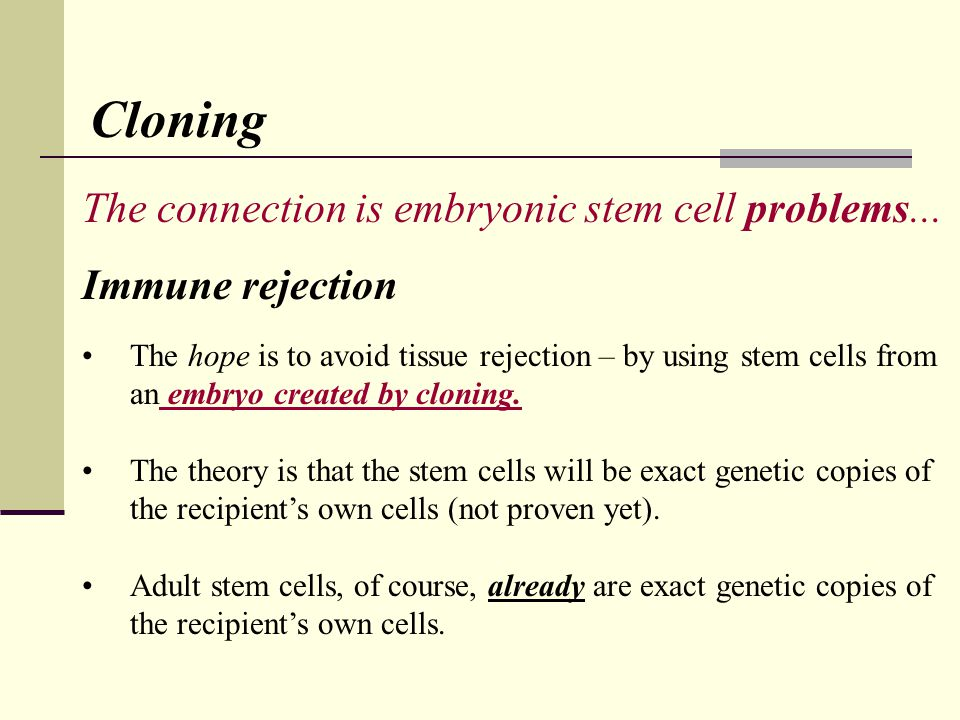 Cloning The connection is embryonic stem cell problems...