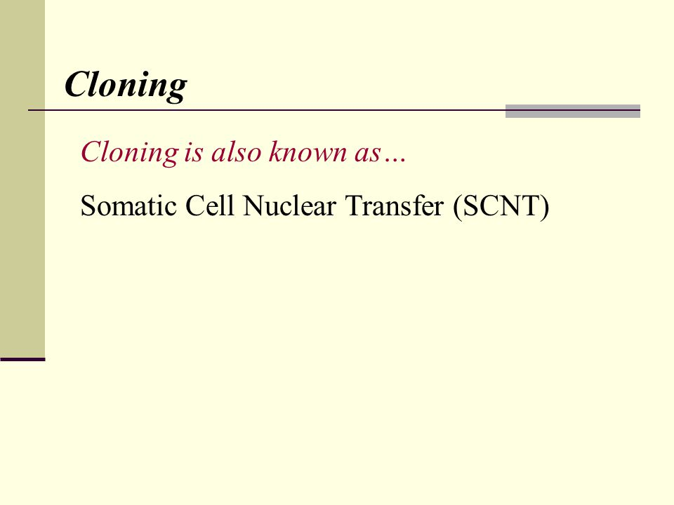Cloning Cloning is also known as… Somatic Cell Nuclear Transfer (SCNT)