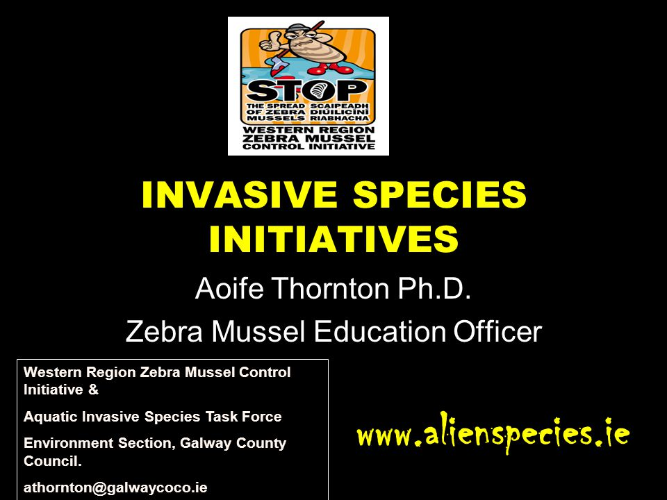 INVASIVE SPECIES INITIATIVES Aoife Thornton Ph.D. Zebra Mussel Education Officer www.alienspecies.ie Western Region Zebra Mussel Control Initiative &