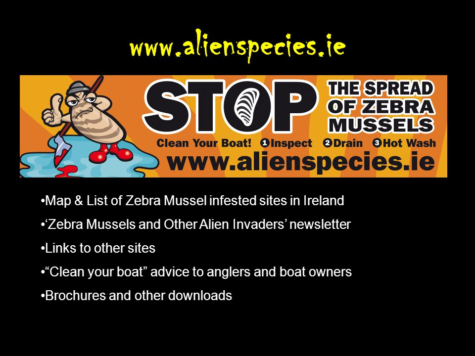 www.alienspecies.ie Map & List of Zebra Mussel infested sites in Ireland Zebra Mussels and Other Alien Invaders newsletter Links to other sites Clean your boat advice to anglers and boat owners Brochures and other downloads