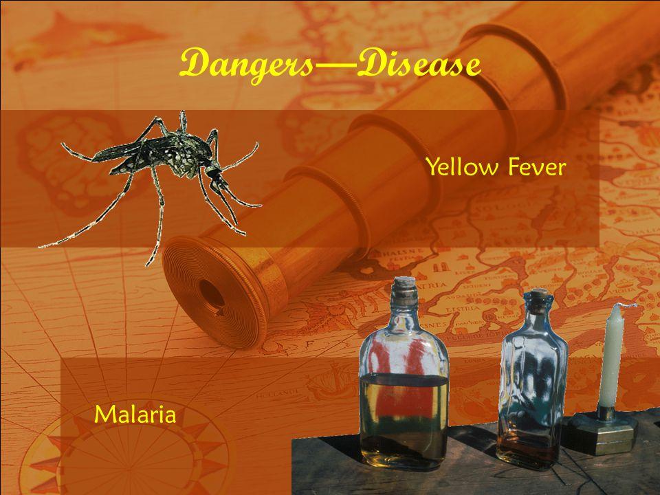 Yellow Fever Malaria DangersDisease