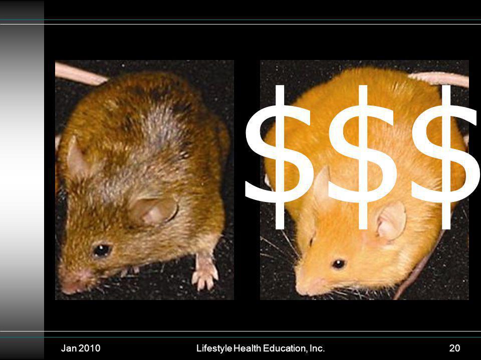 Jan 2010Lifestyle Health Education, Inc.20 $$$