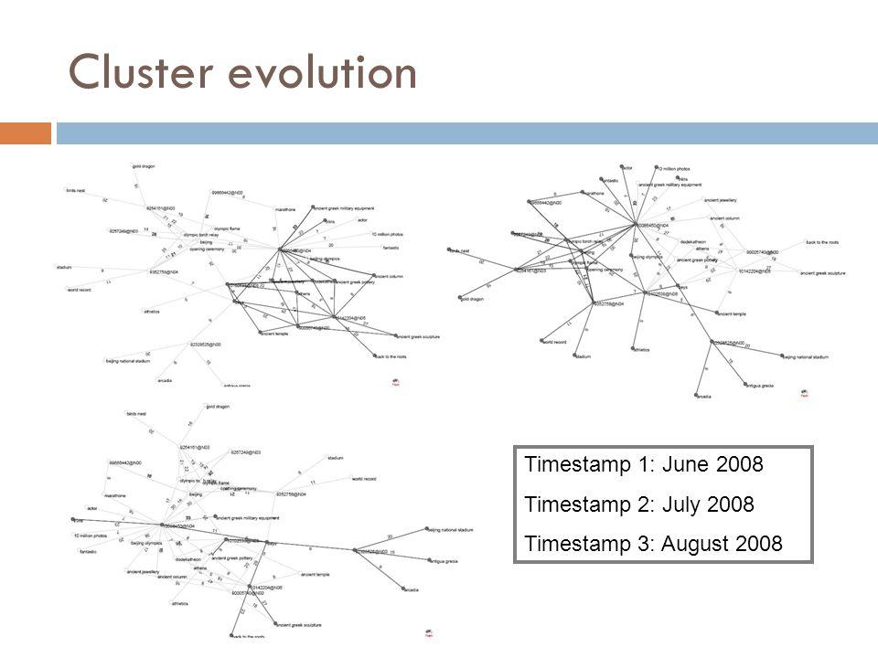Cluster evolution Timestamp 1: June 2008 Timestamp 2: July 2008 Timestamp 3: August 2008
