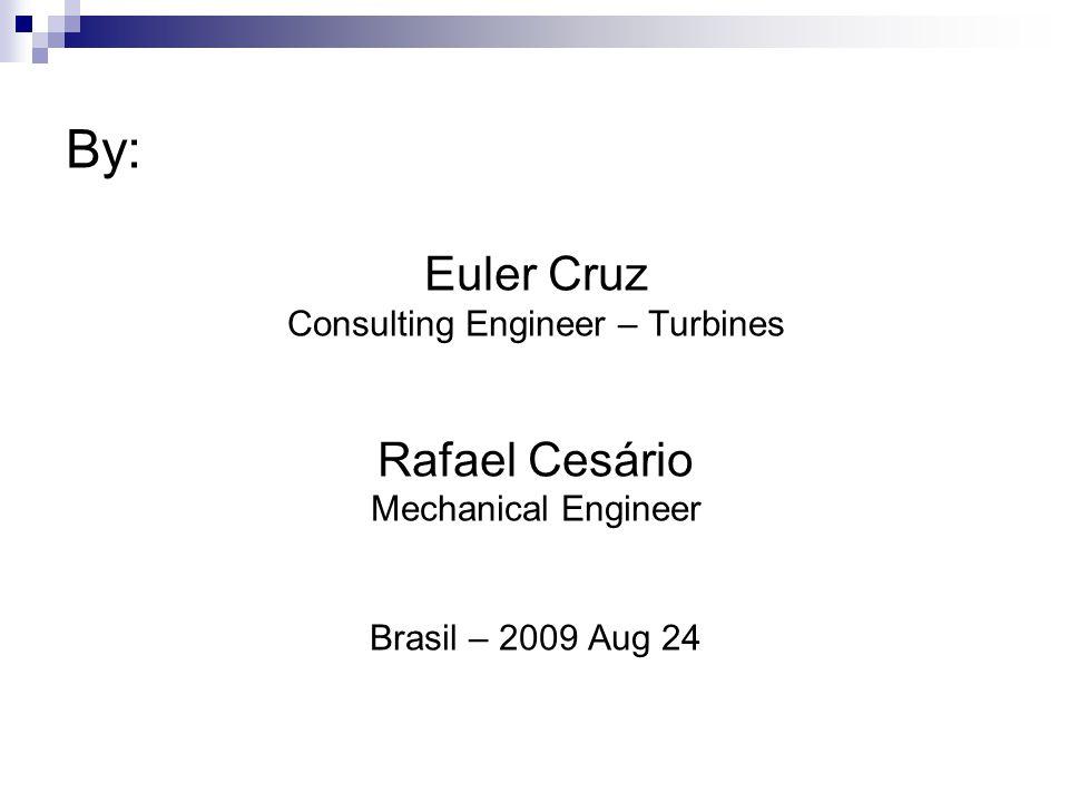 By: Euler Cruz Consulting Engineer – Turbines Rafael Cesário Mechanical Engineer Brasil – 2009 Aug 24