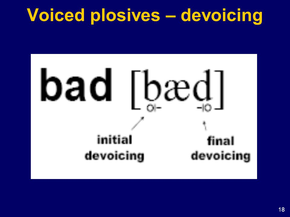 18 Voiced plosives – devoicing