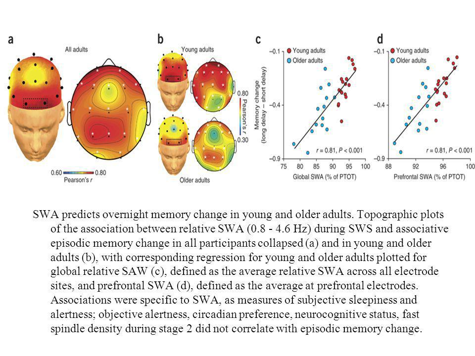 SWA predicts overnight memory change in young and older adults.