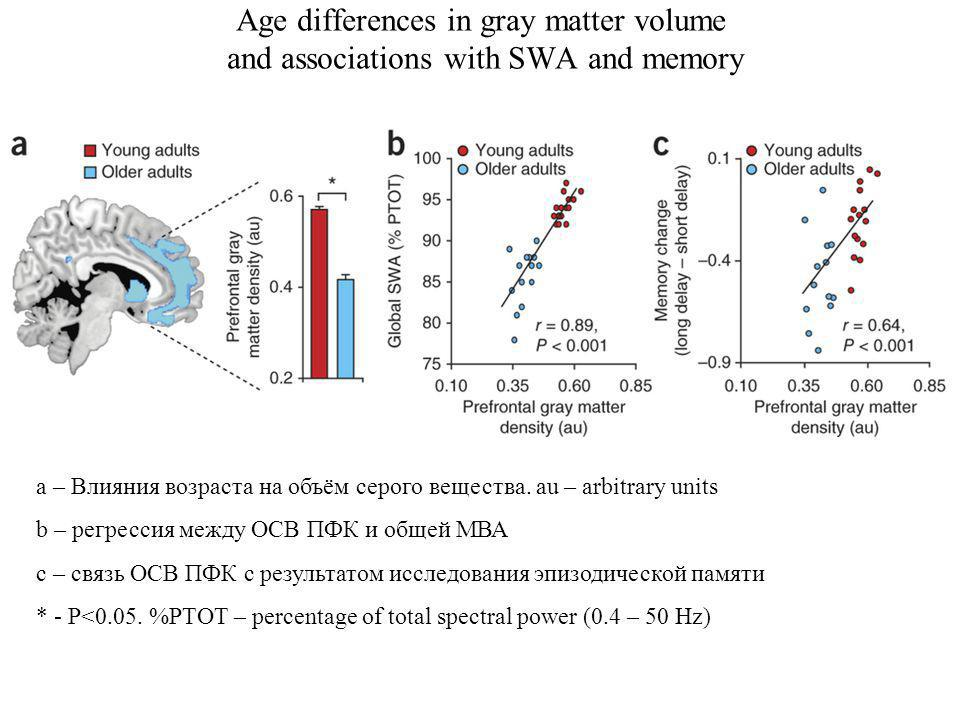 Age differences in gray matter volume and associations with SWA and memory a – Влияния возраста на объём серого вещества.