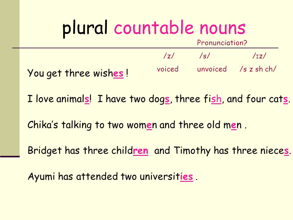 plural countable nouns You get three wish__ ! I love animal__! I have two dog__, three fish__, and four cat__. Chikas talking to two wom_n and three o