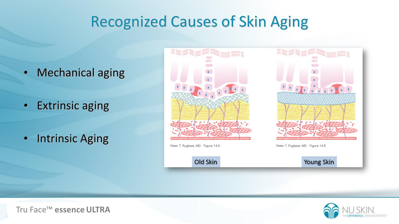 Recognized Causes of Skin Aging Mechanical aging Mechanical aging Extrinsic aging Extrinsic aging Intrinsic Aging Intrinsic Aging Old Skin Young Skin