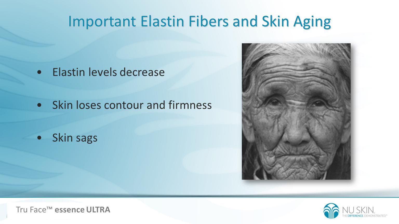 Important Elastin Fibers and Skin Aging Elastin levels decrease Skin loses contour and firmness Skin sags Tru Face essence ULTRA