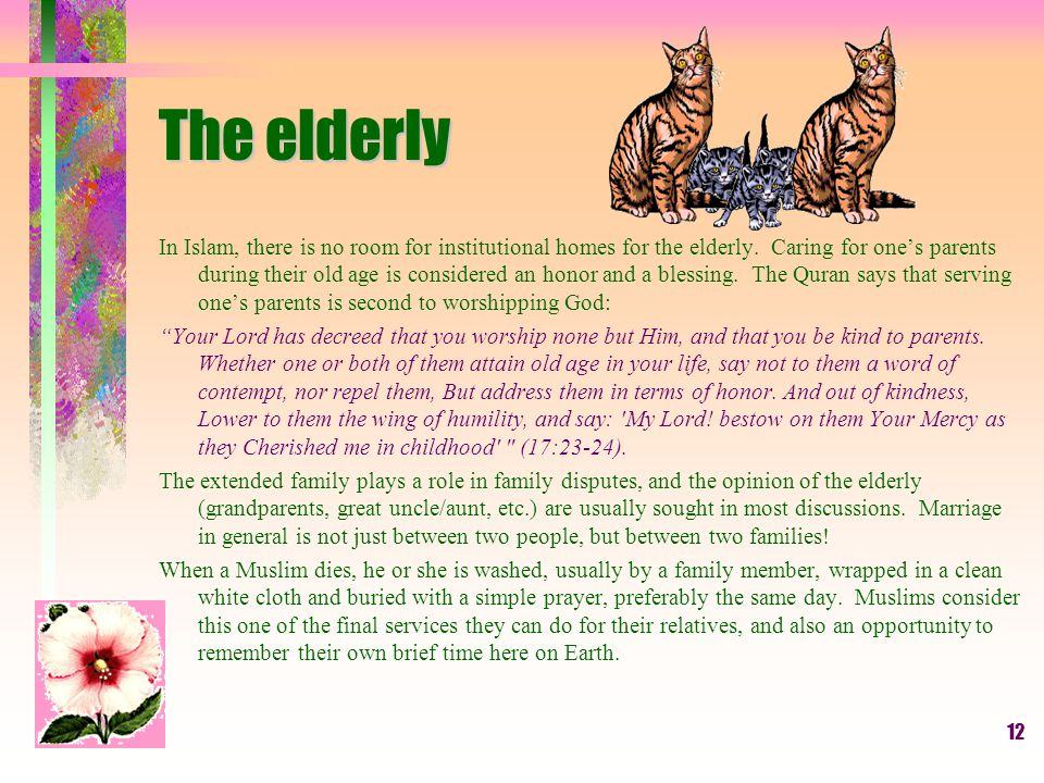 12 The elderly In Islam, there is no room for institutional homes for the elderly.