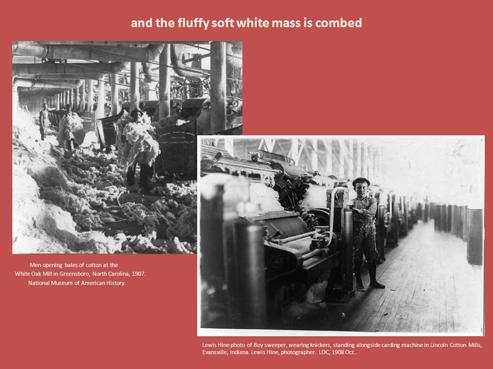 and the fluffy soft white mass is combed Men opening bales of cotton at the White Oak Mill in Greensboro, North Carolina, 1907. National Museum of Ame