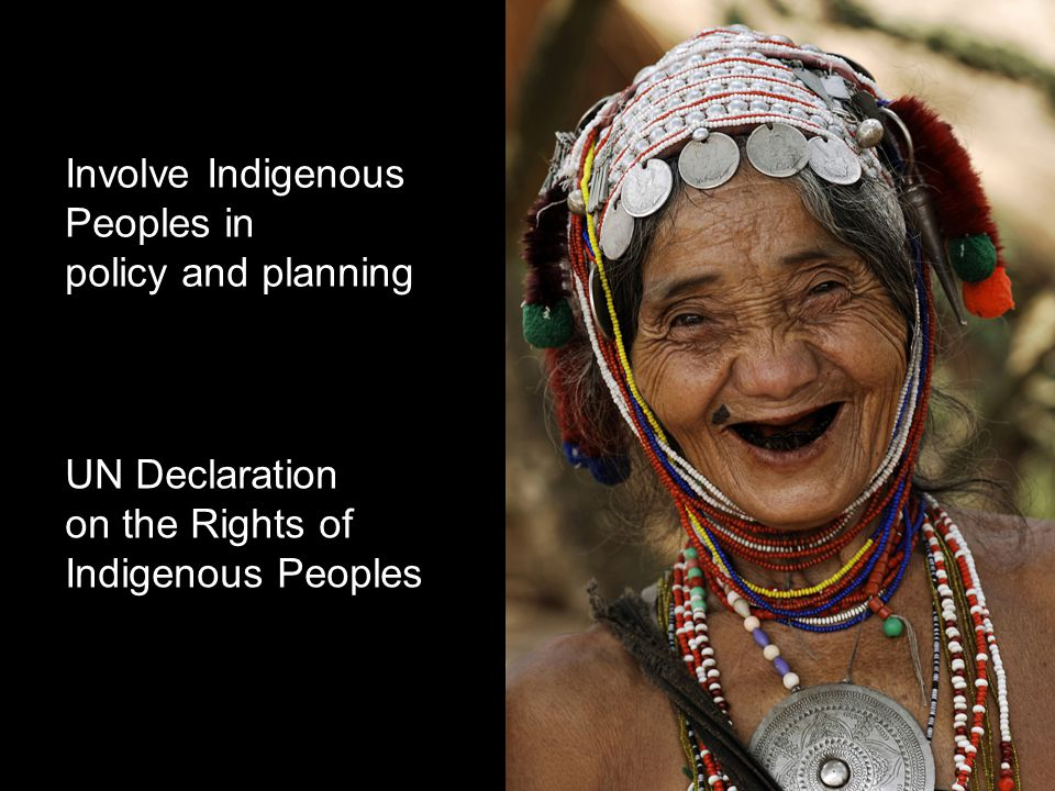 UN Declaration on the Rights of Indigenous Peoples Involve Indigenous Peoples in policy and planning