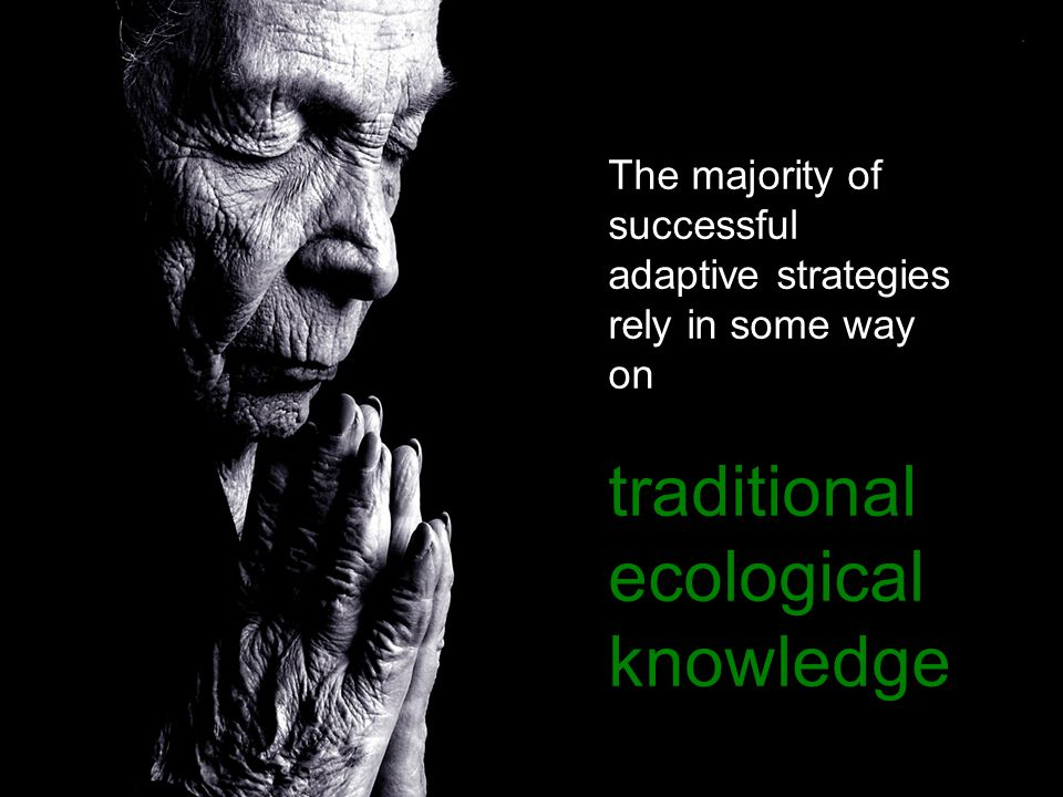 The majority of successful adaptive strategies rely in some way on traditional ecological knowledge