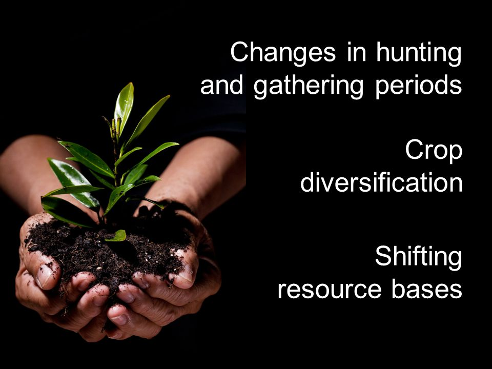 Crop diversification Shifting resource bases Changes in hunting and gathering periods