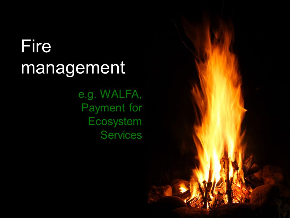 Fire management e.g. WALFA, Payment for Ecosystem Services